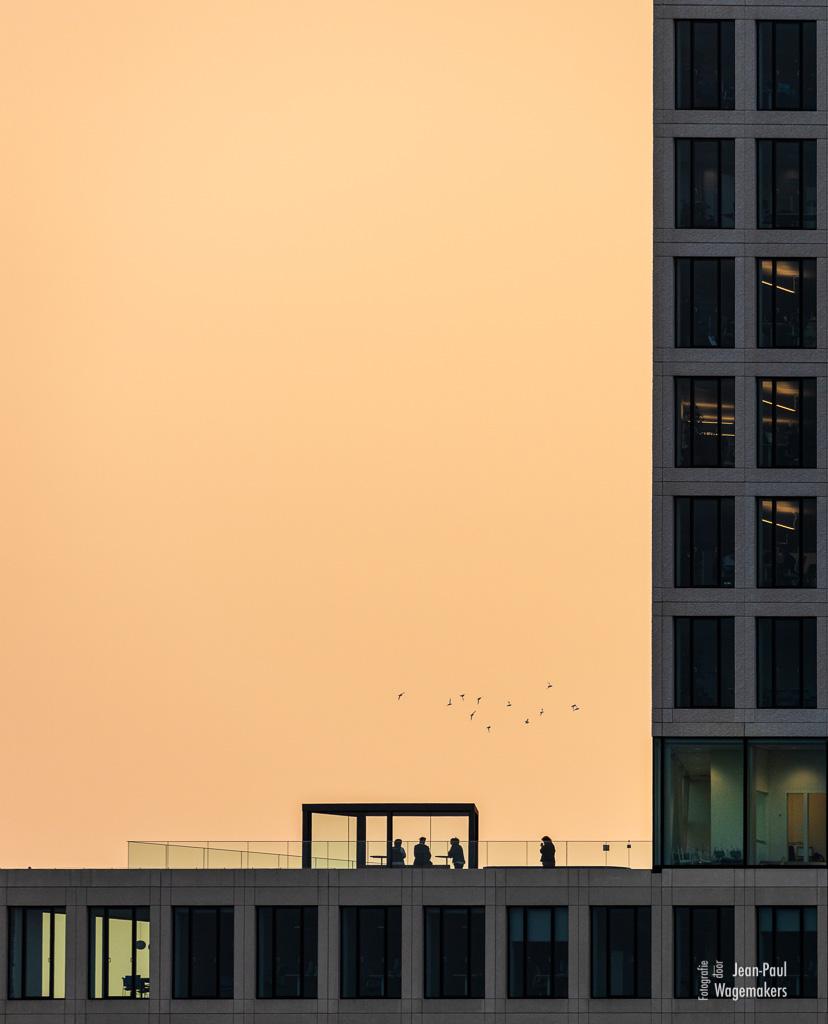 Silhouetten tegen zonsopkomst met saharastof.