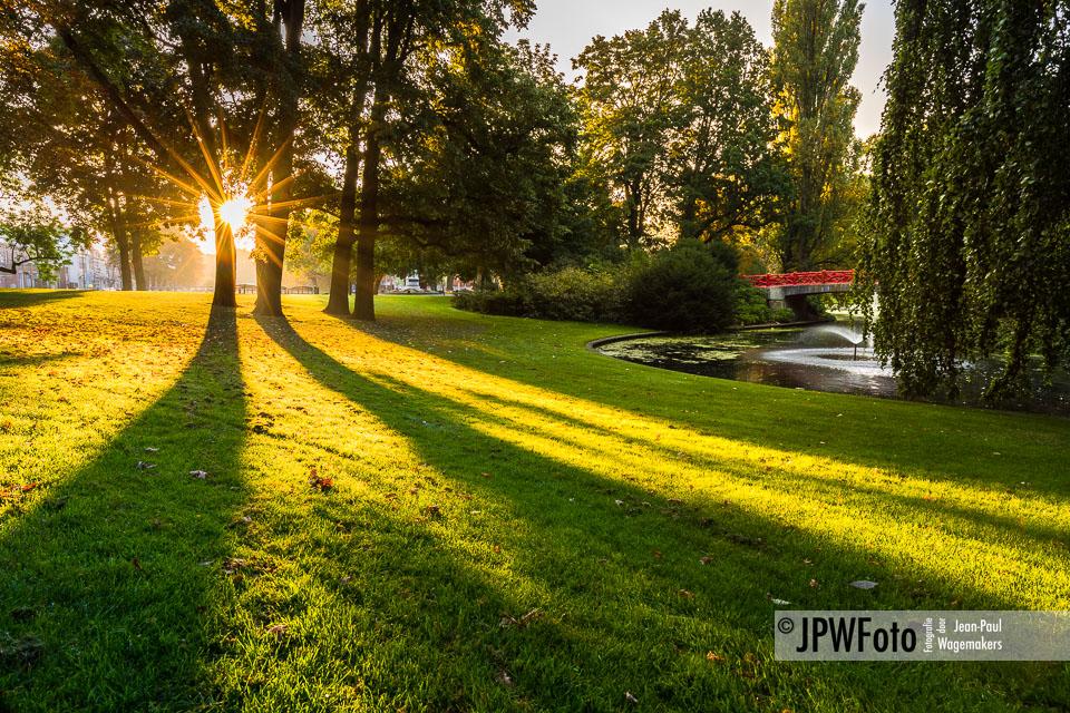 Zonnestralen in Park Valkenberg